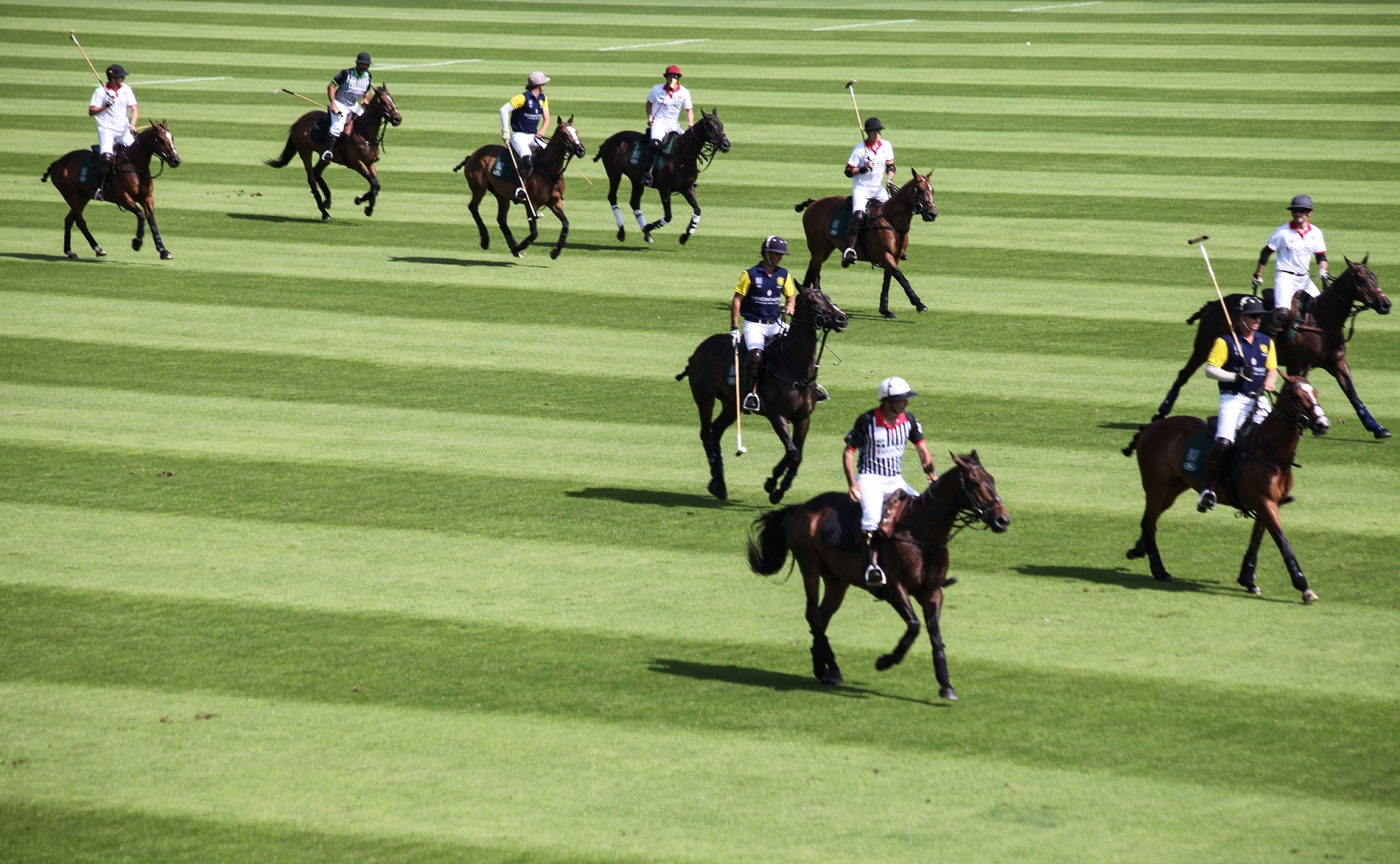 How to enjoy polo when you hate it | Karen Krizanovich rides again